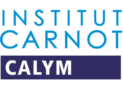 Partnership with Calym Carnot Institute