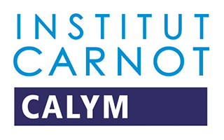 Partnership with the Calym Carnot Institute